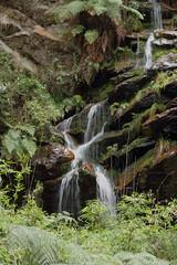 Quebrada Las Delicias (Gerardo Mejía Enciso) Tags: bogotá colombia zipaquirá monserrate museo nacional catedral sal iglesia cascada paisaje agua latinoamerica