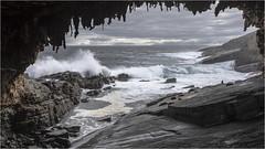 Admirals Arch . Kangaroo Island (:: Blende 22 ::) Tags: arch admiral australia kangarooisland southaustralia admiralsarch grotto waterwaves lion sea sealion rocks felsen wasser wellen bogen canoneos5dmarkiv ef1740mmf4lusm