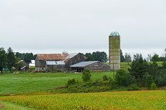 Typical Ontario small farm (wessexman...(Mike)) Tags: infocus highquality farm
