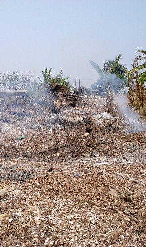 Attempts to eliminate cassava peels by burning them