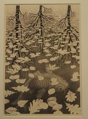 Three Worlds, 1955, M. C. Escher (M_Strasser) Tags: escher olympus olympusomdem1 holland netherlands mcescher