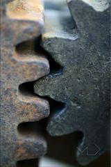... Cogwheel ... (Device66.) Tags: mm macromondays xicon mireto myweek´schallenge macrophotography rusty engranajes cogwheel