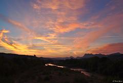 Les flammes de l'aurore (Pascal Rollin) Tags: soleil aube