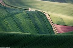 Ruderi di campagna (SDB79) Tags: strada campagna molise ururi agricoltura grano terra