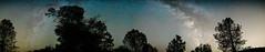 002-180811-ILCE-9-35 mm-223613__ARS3484-Pano (Staufhammer) Tags: sonya9 sonyalpha sony a9 sonylandscape sonymirrorless samyangoptics samyang samyang35mmf14 rokinon rokinon35mmf14 panorama milkyway nationalparks nationalparksservice pinnacles pinnaclesnationalpark perseids meteorshower meteor nightphotography nightscapes nightlandscapes mirrorless fullframe astrophotography night silhouettes