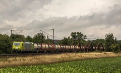 050_2018_08_14_Elze_(Han)_0119_009_ATLU_HLG_mit_TWS_Tankcontainer_➡️_Süden (ruhrpott.sprinter) Tags: ruhrpott sprinter deutschland germany allmangne nrw ruhrgebiet gelsenkirchen lokomotive locomotives eisenbahn railroad rail zug train reisezug passenger güter cargo freight fret elze han elzehan atlu db dispo ebs hlg me rpool eloc hctor hectorrail radve sbbc txla 242 703 0119 0185 1002 1116 1203 1212 1218 1261 6111 4482 6140 6146 6151 6152 6182 6185 6187 6193 9121 9425 es64u2 lightyear re2 walnuss baum logo natur outddor himmel gras graffiti