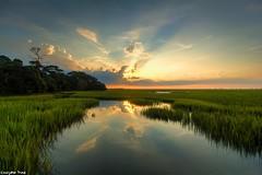 Sunrise looks spectacular (gusdiaz) Tags: canon canonphotography nature naturephotography sunrise amanecer sereno agua reflection reflejo manglar mangrove pantano marsh arboles campo trip trek hike madera arbol grama