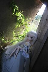 chanelle, pullip nana-chan (jooterveolensofia) Tags: pullip doll pullipdoll pullipphotography dollphotography pullipnanachan nanachan pullips