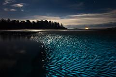 Light waves at Witty's Lagoon (vanessa_macdonald) Tags: red lightpainting light nightphotography wittyslagoon wittys lagoon waves beach night landscape nature seascape vancouverisland victoriabc britishcolumbia bc travel ocean