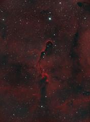 IC 1396 (HOO) (bino_george) Tags: astrometrydotnet:id=nova2772769 astrometrydotnet:status=solved