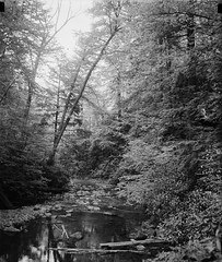 Buck Hill Falls, Pennsylvania, July 1936. (polkbritton) Tags: harrisewing 1930s pennsylvaniahistory libraryofcongresscollections