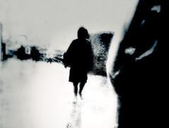 ... (Viewpoint 21) Tags: regen