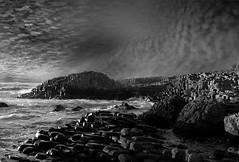 Giant's Causeway. (richard.mcmanus.) Tags: giantscauseway northernireland landscape rocks rockformations basalt unitedkingdom mcmanus monochrome