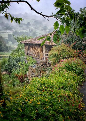 On the Camino Primitivo, near Doriga, Spain