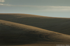 Curves of the Palouse (David J. Greer) Tags: bcpa photo workshop adventure travel palouse washington rural field morning dune curves stark sky shadows margo pinkerton arnie zann