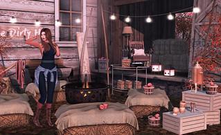 Bonfires and Smores