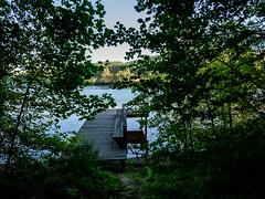 03092018-DSCF1016-2 (Ringela) Tags: österdalälven leksands rastplats september 2018 sweden river nature tree fujifilm xt1