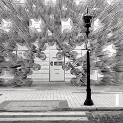 Ai WeiWei (rocami19) Tags: leica dlux 5