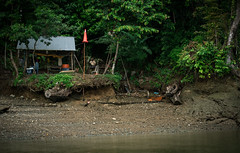 the mechanist (chrispenker) Tags: landschaft lateinamerika märz natur südamerika colombia landscape latinamerica march nature reisen sony southamerica travel