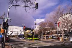 Wellington (andrewsurgenor) Tags: transit transport publictransport bus wellington nz streetscenes buses omnibus yellow busse citytransport city urban newzealand
