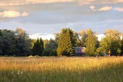 Maastik (Jaan Keinaste) Tags: olympussh1 eesti estonia viljandimaa tipuküla soomaa maastik landscape
