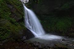 Ichijo Taki Falls IMG_8926 (armada_rider_jp) Tags: waterfall waterfalls falls mountainstream water river rocks 滝 渓流 沢 福井 福井市 一乗滝
