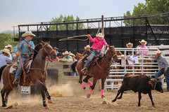 Cowboys C1 (jimmy.stewart40) Tags: sport rodeo cowboys horse roping steer fast speed accuracy