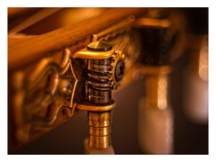 "MY GUITAR _ MM _ ""Cogwheel"" (Werner D.) Tags: wernerd cogwheel macromondays detail depthoffield dof unschärfe bokeh nahaufnahme zwischenring domiplanf2850mm studio"