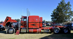Peterbilt (quarterdeck888) Tags: trucks photos truckphotos australiantrucks outbacktrucks workingtrucks primemover class8 overtheroad interstate frosty quarterdeck jerilderietrucks jerilderietruckphotos flickr bdoubles lorry bigrig highwaytrucks interstatetrucks nikon truck claredontruckshow clariontruckshow2018 truckshow australiantruckshows kenworthclassic oldtrucks oldaustraliantrucks australiantransporthistory pete peterbilt kta cummins