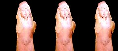 2018_Tut_CA_SciCtr_15_Aug_by_David_Starkman_128 (reel3d1) Tags: susanpinsky davidstarkman 3d stereo stereoscopic threedimensional kingtut tutankhamun casciencecenter tut