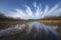 Hinchingbrooke Country Park (CraDorPhoto) Tags: canon6d landscape water pond reflection clouds sky reeds grassland trees nature outdoors park uk cambridgeshire