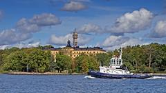 The tug boat Montfred in Stockholm (Franz Airiman) Tags: tug tugboat bogserbåt montfred båt boat ship fartyg stockholm sweden scandinavia kaknästornet kaknästower manillaskolan campusmanilla saltsjön djurgården