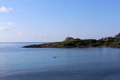 2018.08.16 Urlaub Mallorca (264b) (klemenshorst) Tags: mallorca delfin meer urlaub hai palma cala ratjada es caregador capdepera