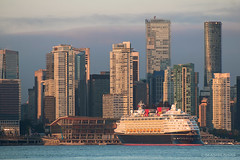 Among Giants 🏦🚢🏪 Vancouver, BC (Michael Thornquist) Tags: disneycruiseline disneycruise disneywonder disney cruiseship portofvancouver coalharbour vancouverconventioncentre shangrilavancouver trumpvancouver vancouver lonsdalequay northvan northvancouver myportcity ilovevan britishcolumbia dailyhivevan vancitybuzz vancouverisawesome insidevancouver tourismvancouver veryvancouver 604now photos604 explorecanada ilovebc vancouverbc vancouvercanada vancity pacificnorthwest pnw metrovancouver gvrd canada 500px
