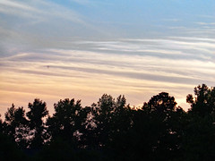 Trees And Evening Sky. (dccradio) Tags: lumberton nc northcarolina robesoncounty outdoor outdoors outside nature natural scenic beauty beautiful sky clouds silhouette tree trees branches treebranch branch foliage sunset sunsetcolors dusk settingsun evening pretty leaf leaves summer summertime summerfoliage august monday sony cybershot dscw830