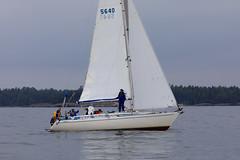 Wind Rose (Antti Tassberg) Tags: syyspurjehdus purjehdus purjevene espoo eps windrose sailing sailingboat yacht