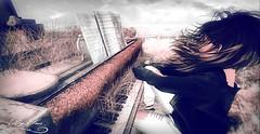 Piano (|I{•------» 丂υş «------•}I|) Tags: secondlife sl game avatar avi bentoavi bento bentoavatar maitreya bajanorte art avatars backgrounds color creative colors digital elegant firestorm female hair image life linden love ll lindenlab model mesh photoshop photography poses second pose vr virtualreality virtual rp roleplay catwa screensaver skin sexy women woman