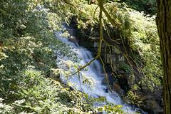 Longwood Gardens (Tom Ipri) Tags: longwoodgardens waterfalls canoneos5dmarkiv