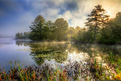 Maine Highlands - Echo Lake (Greg from Maine) Tags: maine lake landscape vegetation plants echolake pufferspond dexter dextermaine mainehighlands fog morningmist morning reflection trees penobscotcounty lilypad sunrays sunburst
