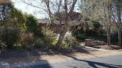Front entrance (spelio) Tags: mal mj home old house sep 2018 belconnen act canberra australia