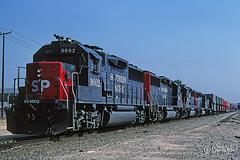 SP 9602 - Carson CA - 06/13/88 (RockAndRail) Tags: southernpacific sp espee sp9602 gp60 emd gmlg doloresyard carsoncalifornia carsonca carson california 86618503 built1287 generalmotorselectromotivedivision electromotivedivision railroad train railway gp geep generalmotorslocomotivegroup locomotive diesel intermodal freight doublestack cofc intermodaltrain freighttrain doublestacktrain stacks