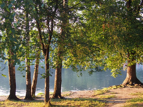 Парк Кузьминки ©  Liendain