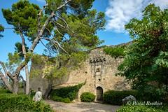 Château de Staël, Ménerbes (Vaucluse, Provence, France) (pascalrouthier) Tags: lion fuji fujifilm fujixt20 fujifilmxt20 staël château france vaucluse provence luberon ménerbes