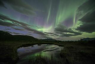The Aurora #2
