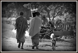 Un moine sourd ? Une rue de Champassak au laos.