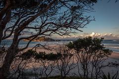 evening at the beach (Rafael Zenon Wagner) Tags: abend sonnenuntergang strand ozean wellen wolken baum schatten licht evening sunset beach ocean waves clouds tree shadow light
