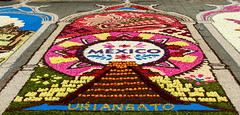 Tapis de fleurs de la délégation mexicaine (Uriangato) (CORMA) Tags: 2018 belgique belgium bruxelles brussels tapisdefleurs flowercarpet europe monumentsofunescoinflowers mexique