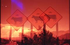 Turquoise Trail, NM (cestlameremichel) Tags: new mexico redscale red film 35mm analog analogue analogica nouveau mexique santa fe pueblo native america usa roadtrip 666 agfa vista plus 200 filmisnotdead