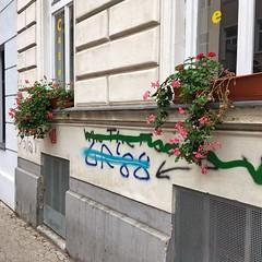 Mitte (brimidooley) Tags: mitte vienna vienne wien austria österreich oostenrijk autriche eu europe travel viedeň city citybreak tourism viena