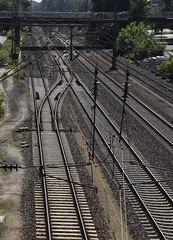 Geleise am Lingener Bahnhof (4) (Chironius) Tags: lingen emsland germany deutschland niedersachsen allemagne alemania germania германия stahl schiene rotaia rail binario ре́льсы gleis железнодоро́жная carril voie track via